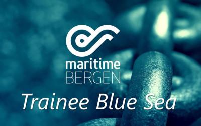 Trainee Blue Sea